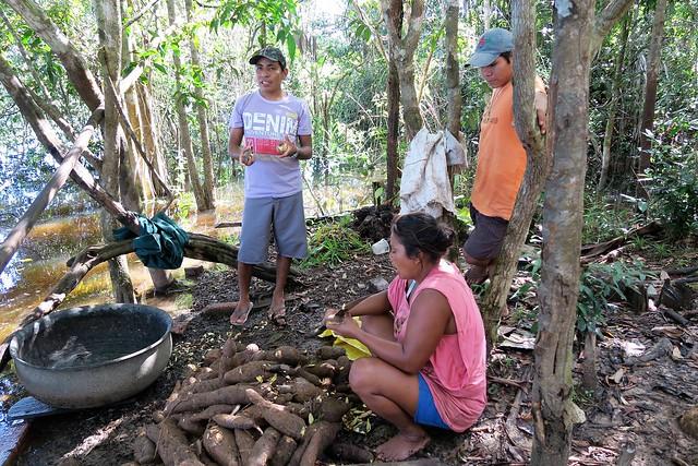 preparing tapioca village amazon