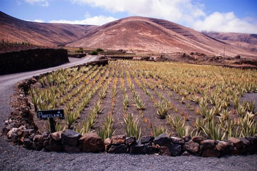 Mountains in Lanzarote.