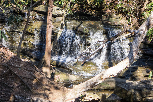 Pleasant Ridge Park-8