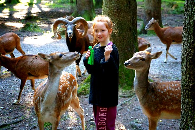 Family Eco tourism in Germany