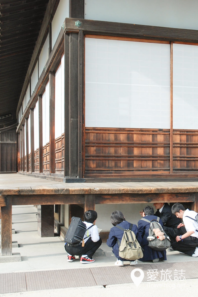 京都赏樱景点 元离宫二条城 10