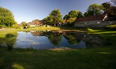 Ashmore dew pond