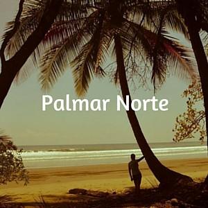 Palmar Norte