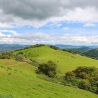 Calero County Park Spring Hike