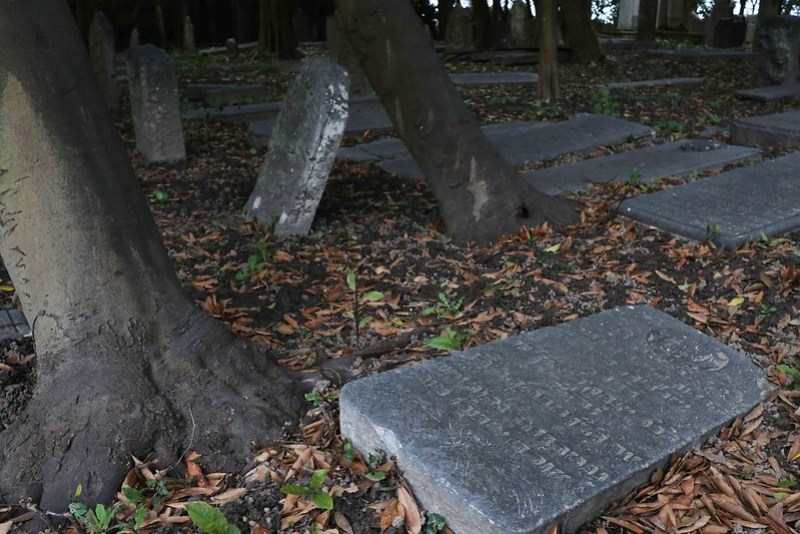 Delhi's Bandaged Heart – Henry Wadsworth Longfellow, Venice's Ancient Jewish Cemetery