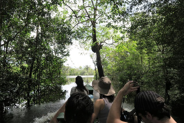 cruising amazon tupana river canoe