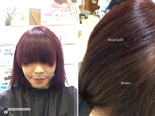 Shunji Matsuo Two Tone Rose Gold Hair
