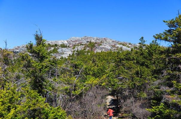White Dot Trail Above Treeline 2