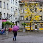 05 Viajefilos en Friburgo, Suiza 26