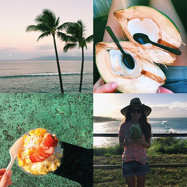 Maui-grid