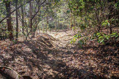Pleasant Ridge Park-34