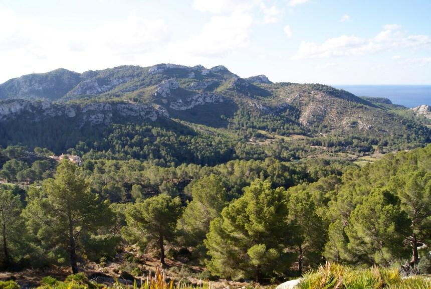 Excursión al Puig d'en Farineta