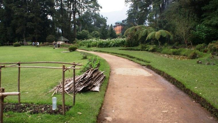 Victoria Park Newara Eliya 37