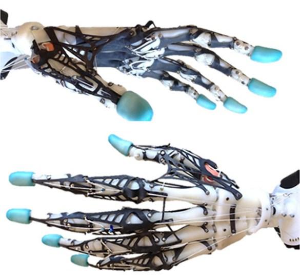 Biomimetic Prosthetic