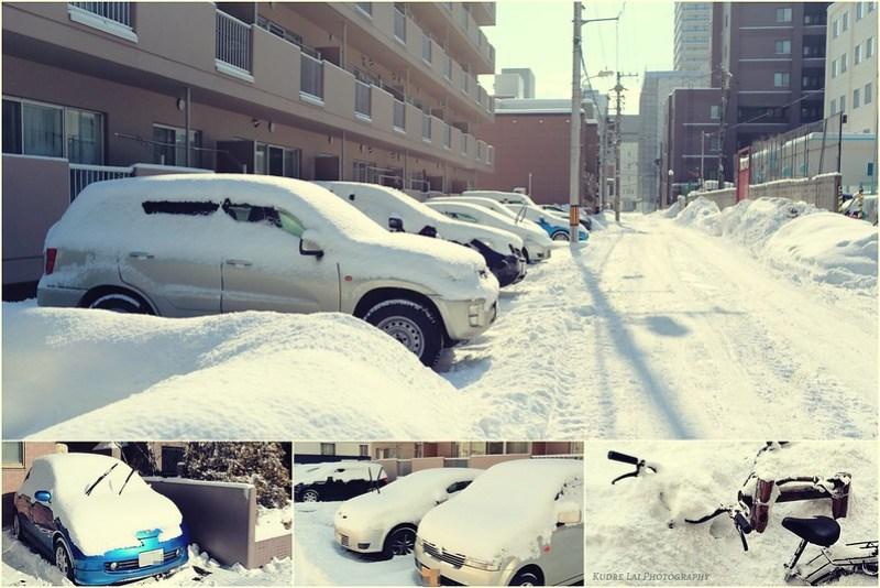 雪國不浪漫時刻(Snow cover everying)