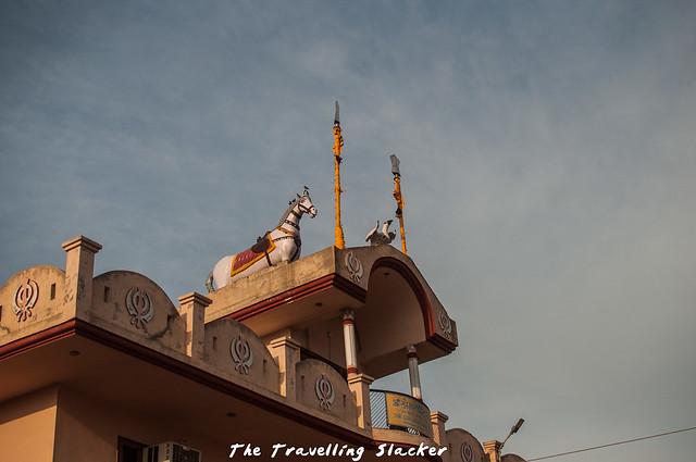 Dholpur (17)