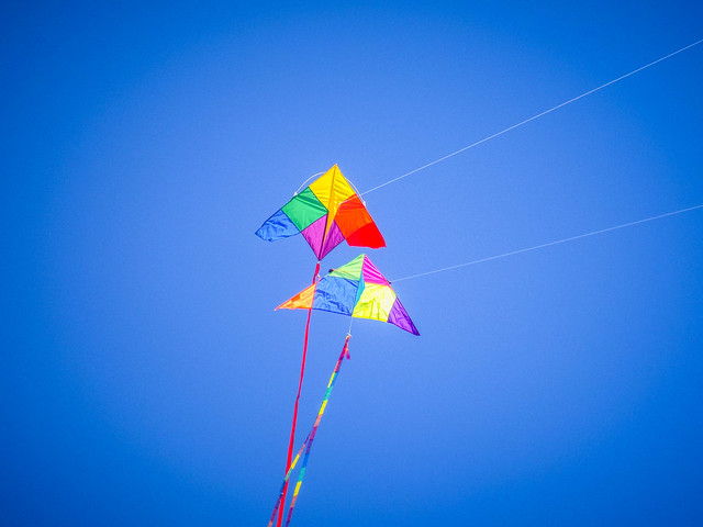 Kites and Drones at Legacy Park-026