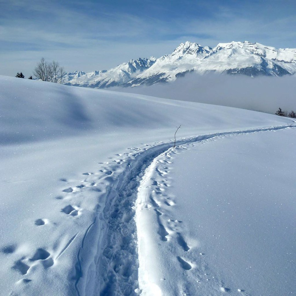 Natur (Winter)