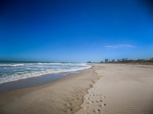 Avalon Beach-001