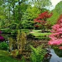 Holland: Den Haag - Clingendael Park