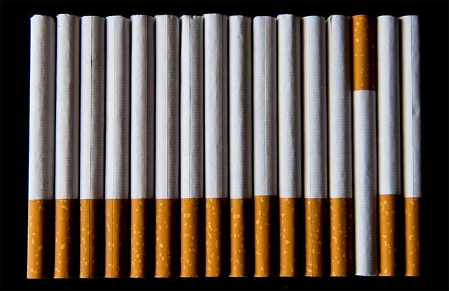 12 Cigars