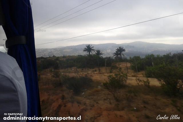 Vía Las Palmas (Viña del Mar) - GDVG30