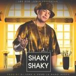 Cover Version2 - Daddy Yankee Shaky Shaky.jpg.