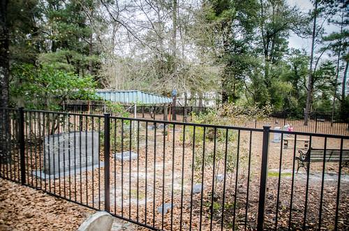 Speedwell Methodist Church and Cemetery-019