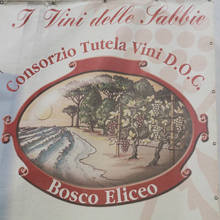Bosco Eliceo DOC