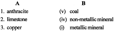 ICSE Solutions for Class 6 Geography Voyage - Minerals and Ores 3.1