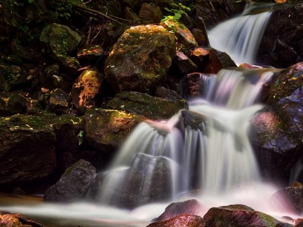 Light in the creek