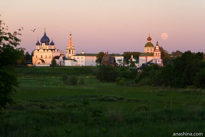 Суздальский кремль и Ильинская церковь со стороны Ильинского луга