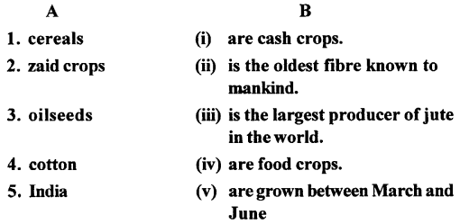ICSE Solutions for Class 6 Geography Voyage - Major Crops 3