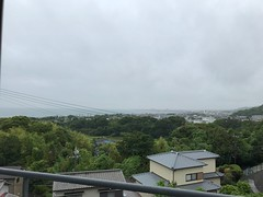 梅雨入りしました