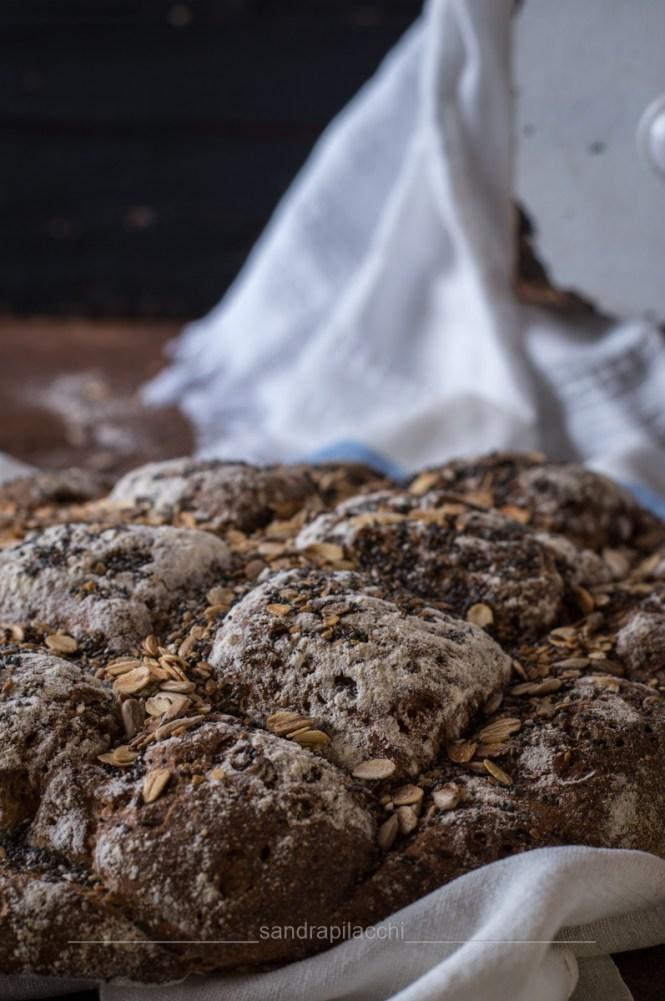 pane persiana con semi - verticale particolare pane_