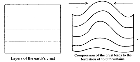 ICSE Solutions for Class 6 Geography Voyage - Major Landforms of the Earth 3.3