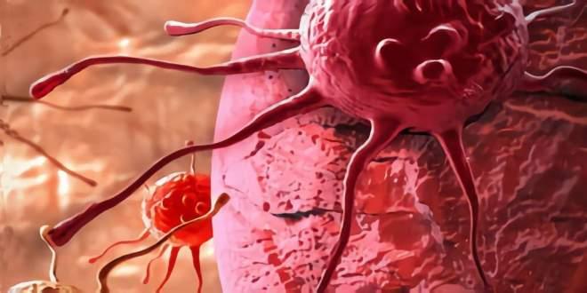 cancer-camera-100-millions-images-par-seconde