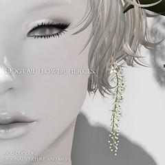 *NAMINOKE*dogtail flower pierce