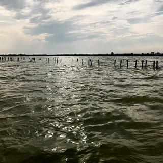 Auf der Lagune