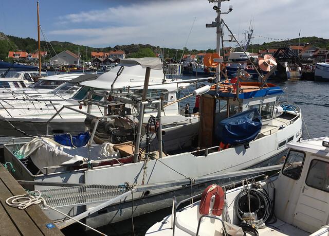 Havets_dag_ronnang - 39