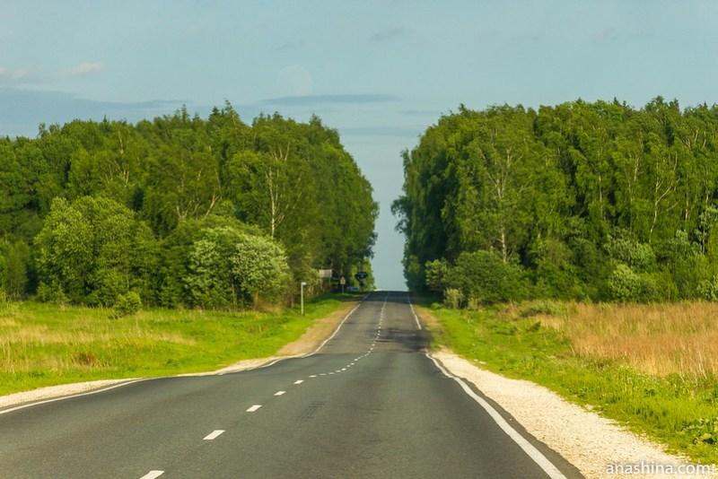Дорога через перелесок, Владимирская область