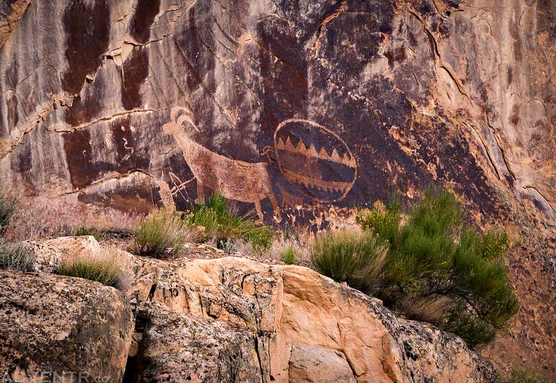 Camp Petroglyphs