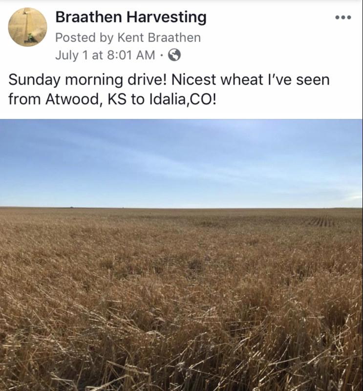 Braathen Harvesting