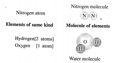 ICSE Solutions for Class 6 History and Civics - Atomic Structure-04