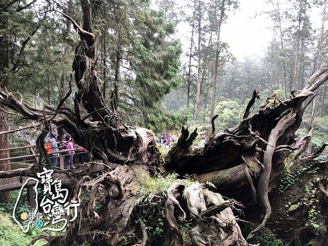 TaiwanTour_262