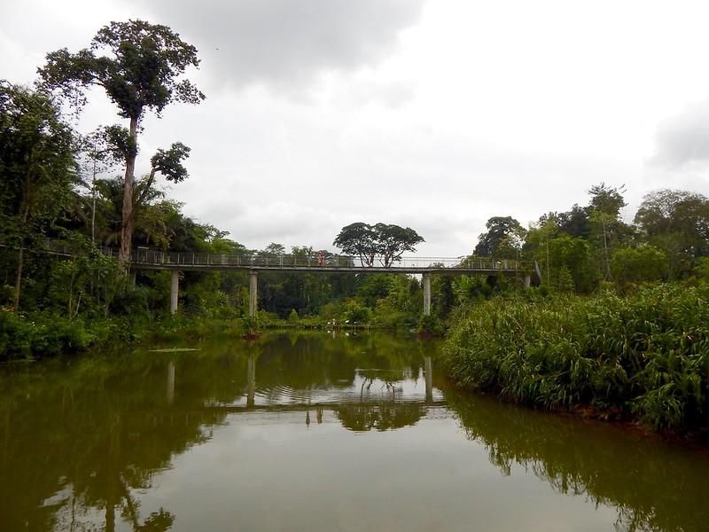 City Girl City Stories: Singapore Botanic Gardens