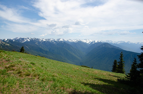 Hurricane Ridge Road in Olympics National Park-014