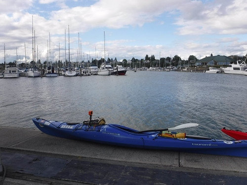Bellingham Harbor with Moondance Kayaks-43