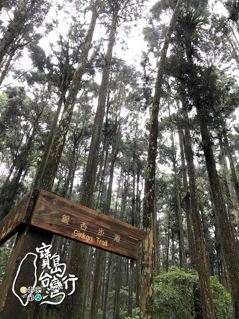 TaiwanTour_276