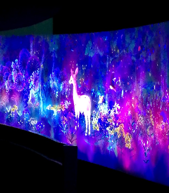 teamLab at National Museum of Singapore: Story of the Forest